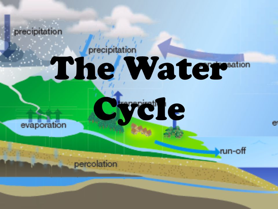 1 The Water Cycle