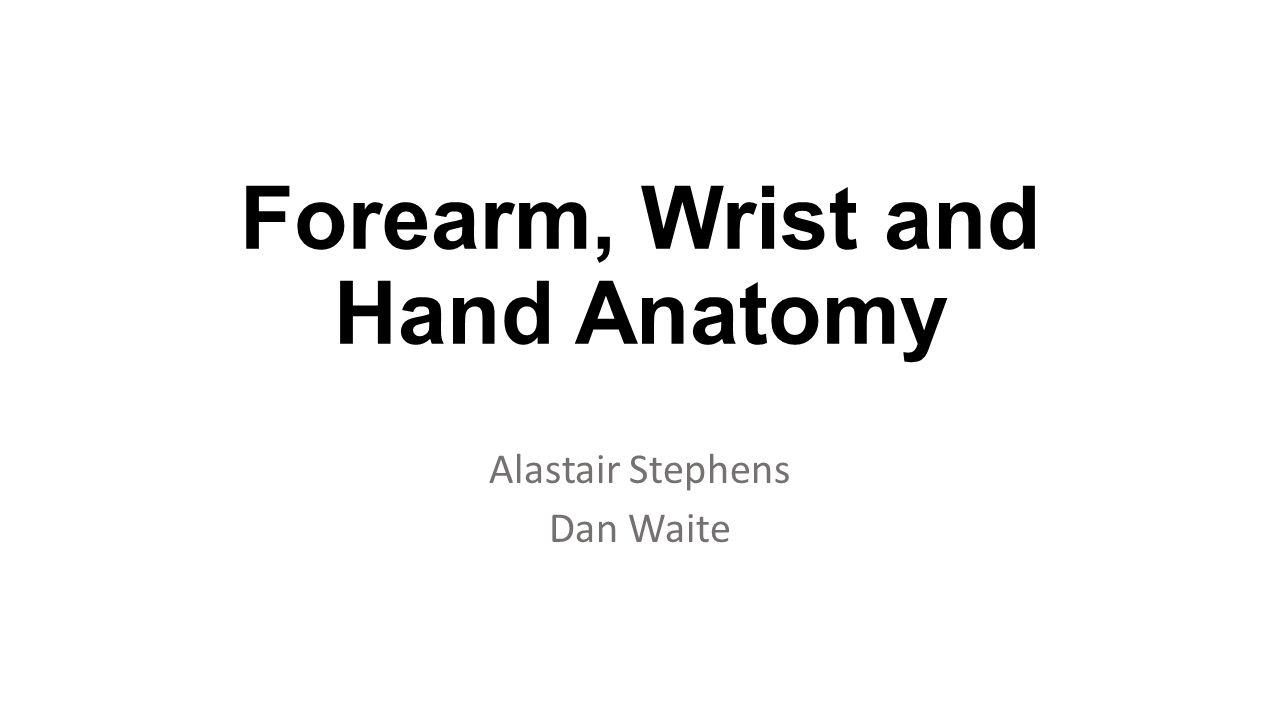 Label the carpal bones of the wrist.