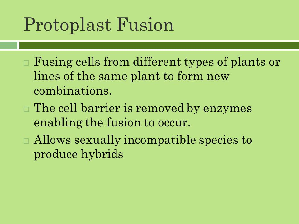 Protoplast Fusion  Fusing cells from different types of plants or lines of the same plant to form new combinations.