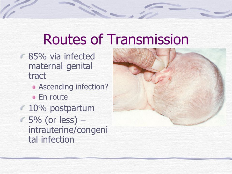 Routes of Transmission 85% via infected maternal genital tract Ascending infection.
