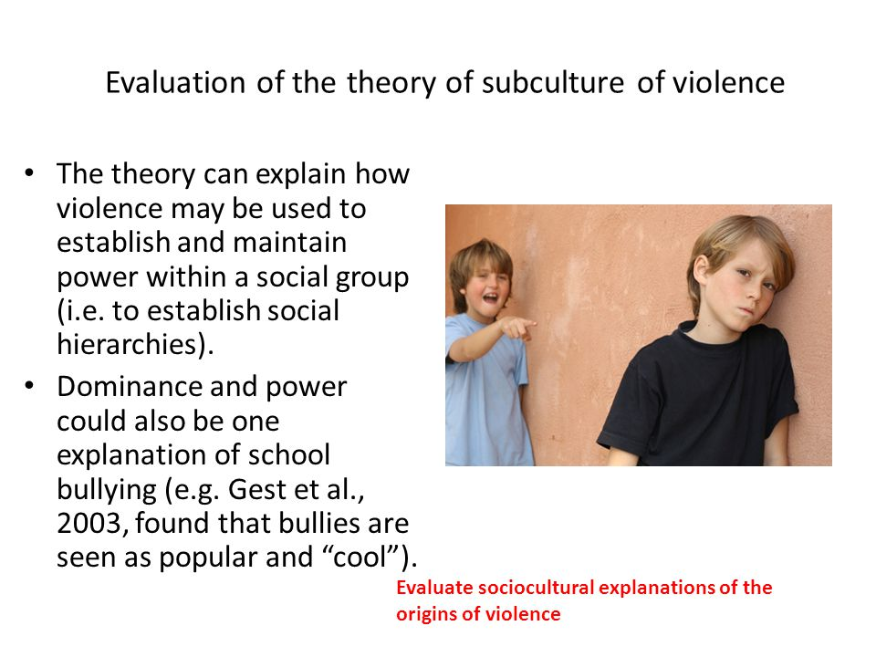 Violence within subcultures?