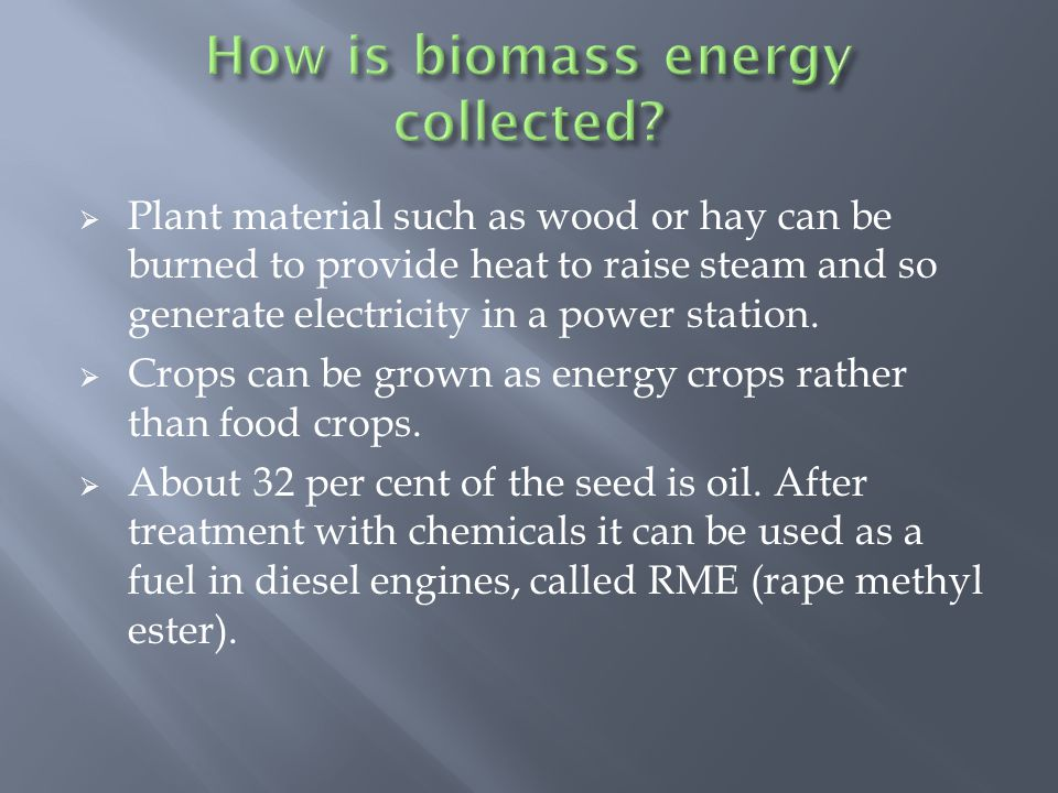  Plant material such as wood or hay can be burned to provide heat to raise steam and so generate electricity in a power station.