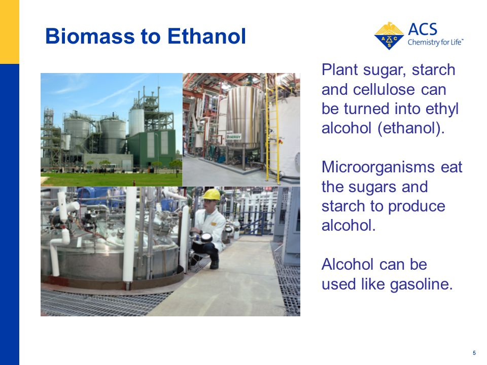 Biomass to Ethanol 5 Plant sugar, starch and cellulose can be turned into ethyl alcohol (ethanol).