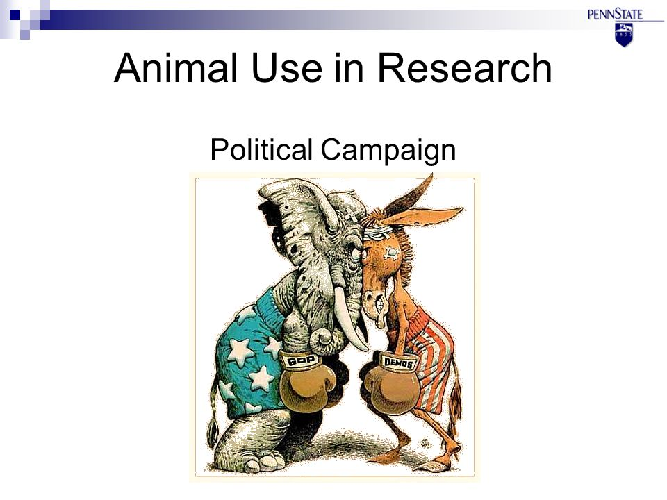 Animal Use in Research Political Campaign