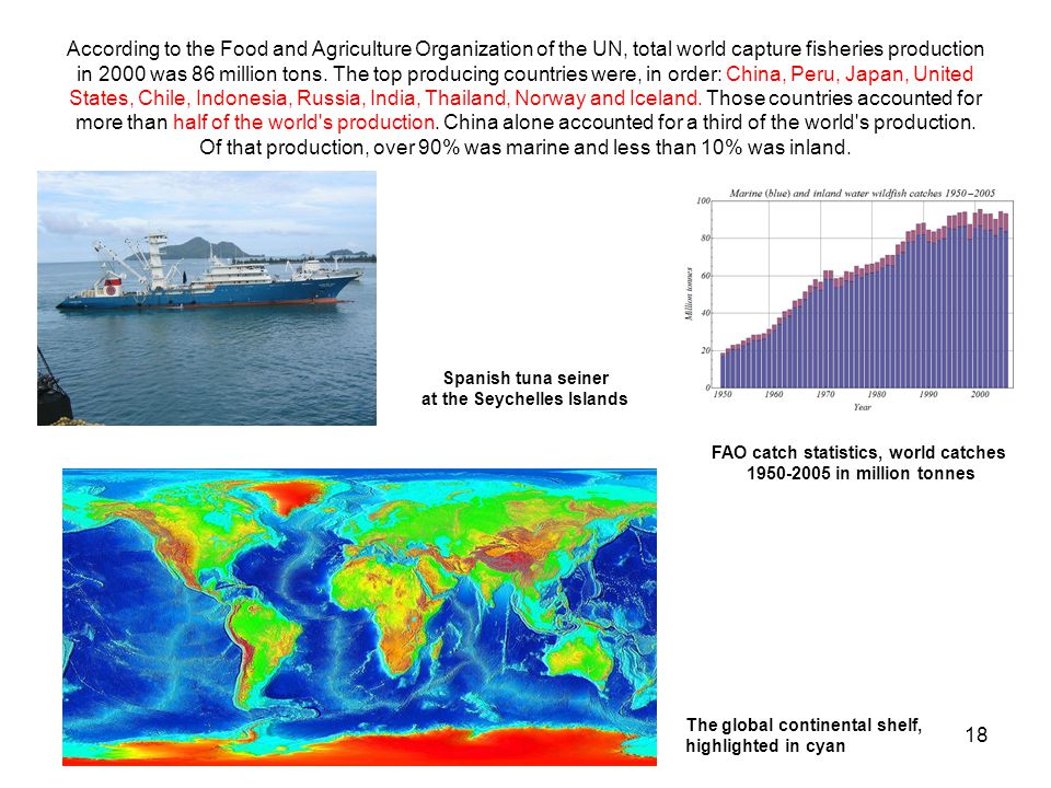 18 According to the Food and Agriculture Organization of the UN, total world capture fisheries production in 2000 was 86 million tons.