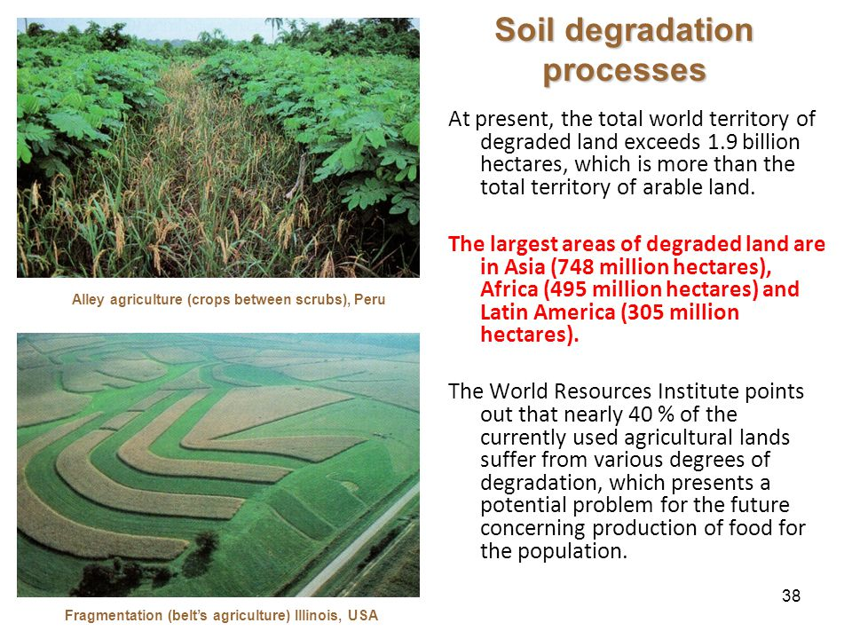 38 Soil degradation processes At present, the total world territory of degraded land exceeds 1.9 billion hectares, which is more than the total territory of arable land.