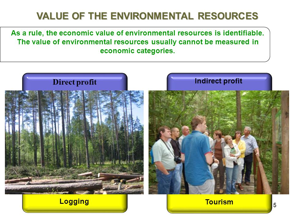 5 As a rule, the economic value of environmental resources is identifiable.