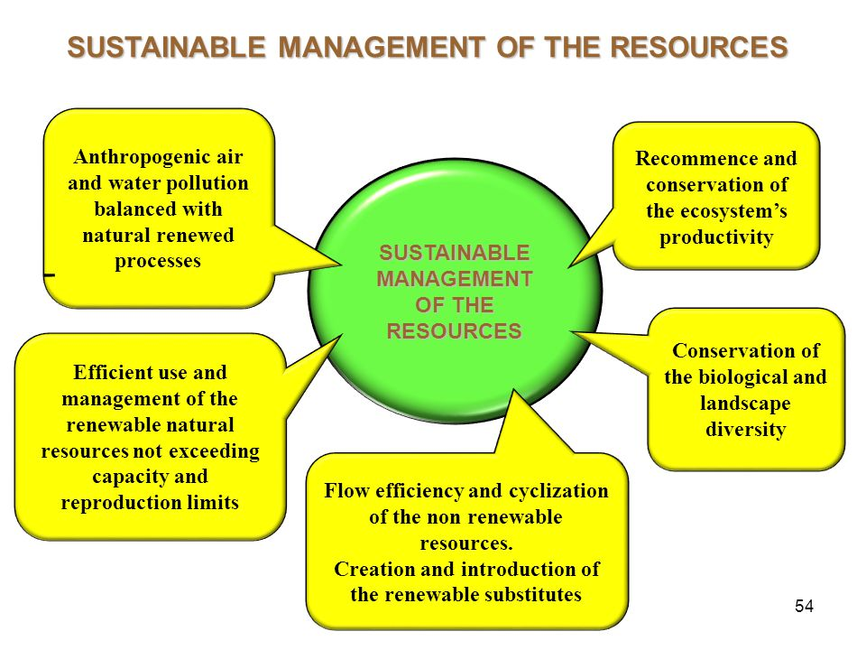 54 SUSTAINABLE MANAGEMENT OF THE RESOURCES Recommence and conservation of the ecosystem's productivity Anthropogenic air and water pollution balanced with natural renewed processes Efficient use and management of the renewable natural resources not exceeding capacity and reproduction limits Conservation of the biological and landscape diversity Flow efficiency and cyclization of the non renewable resources.