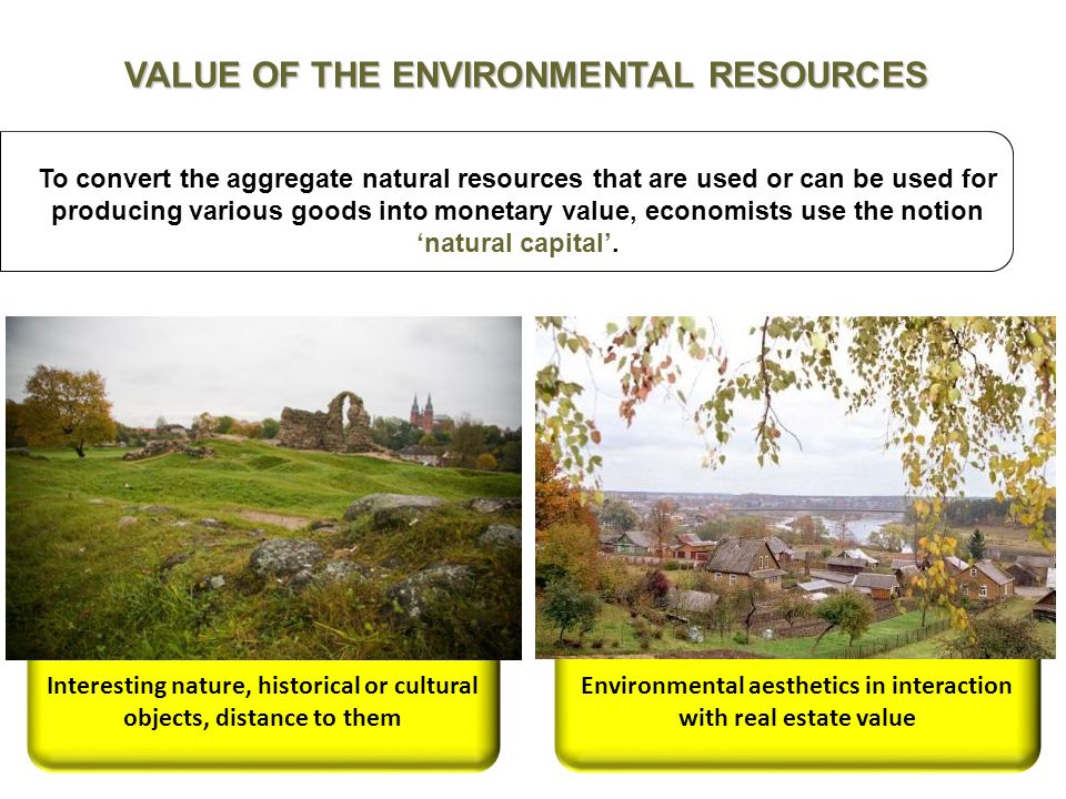 7 To convert the aggregate natural resources that are used or can be used for producing various goods into monetary value, economists use the notion 'natural capital'.