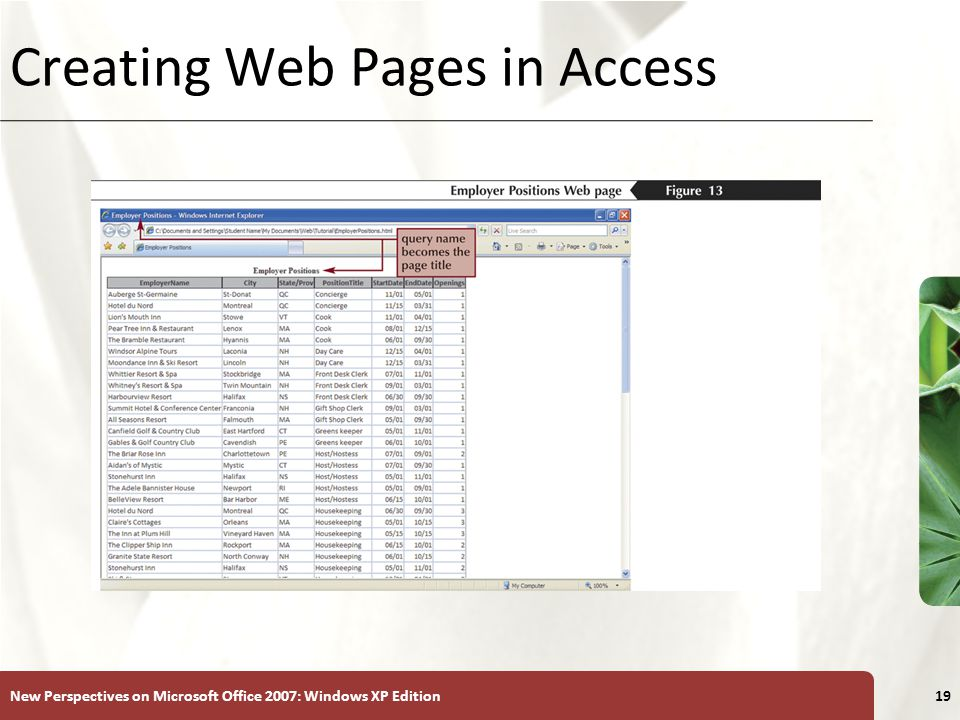 XP New Perspectives on Microsoft Office 2007: Windows XP Edition19 Creating Web Pages in Access