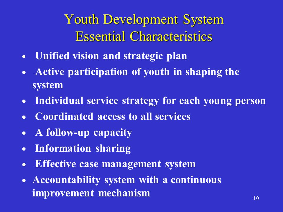 10 Youth Development System Essential Characteristics  Unified vision and strategic plan  Active participation of youth in shaping the system  Individual service strategy for each young person  Coordinated access to all services  A follow-up capacity  Information sharing  Effective case management system  Accountability system with a continuous improvement mechanism