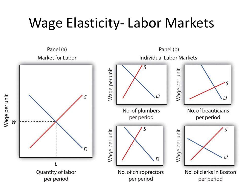 Wage Elasticity- Labor Markets