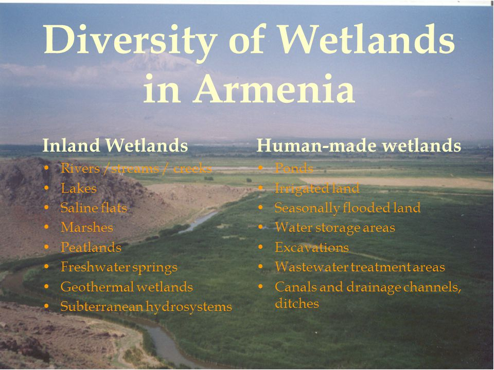 Diversity of Wetlands in Armenia Inland Wetlands Rivers /streams / creeks Lakes Saline flats Marshes Peatlands Freshwater springs Geothermal wetlands Subterranean hydrosystems Human-made wetlands Ponds Irrigated land Seasonally flooded land Water storage areas Excavations Wastewater treatment areas Canals and drainage channels, ditches