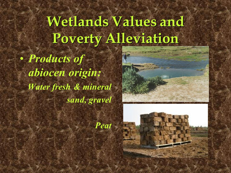 Wetlands Values and Poverty Alleviation Products of abiocen origin: Water fresh & mineral sand, gravel Peat