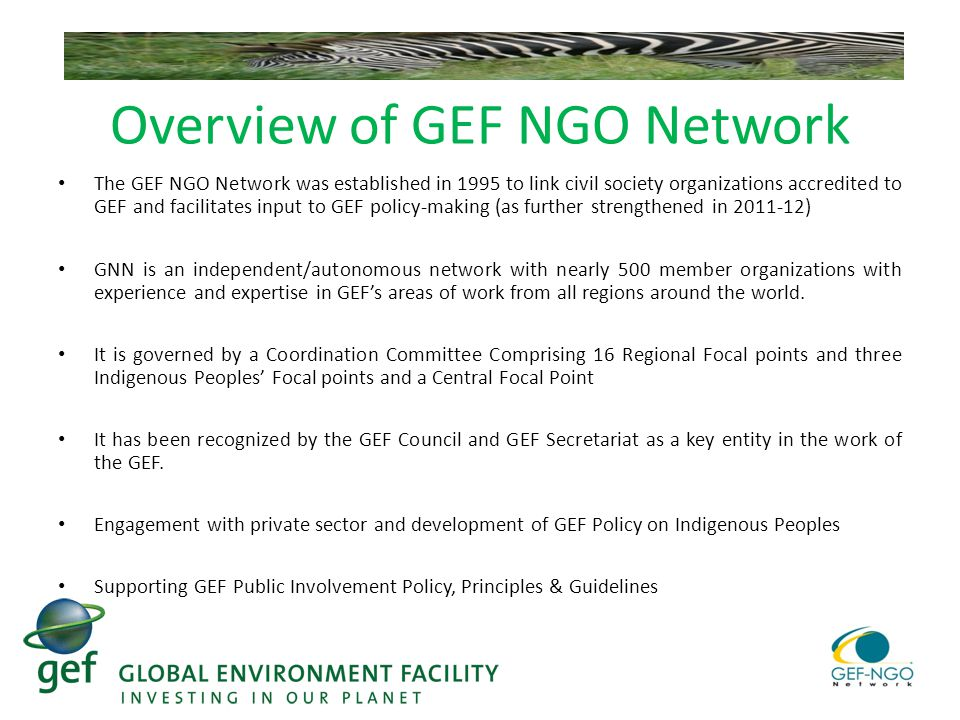 Overview of GEF NGO Network The GEF NGO Network was established in 1995 to link civil society organizations accredited to GEF and facilitates input to GEF policy-making (as further strengthened in ) GNN is an independent/autonomous network with nearly 500 member organizations with experience and expertise in GEF's areas of work from all regions around the world.
