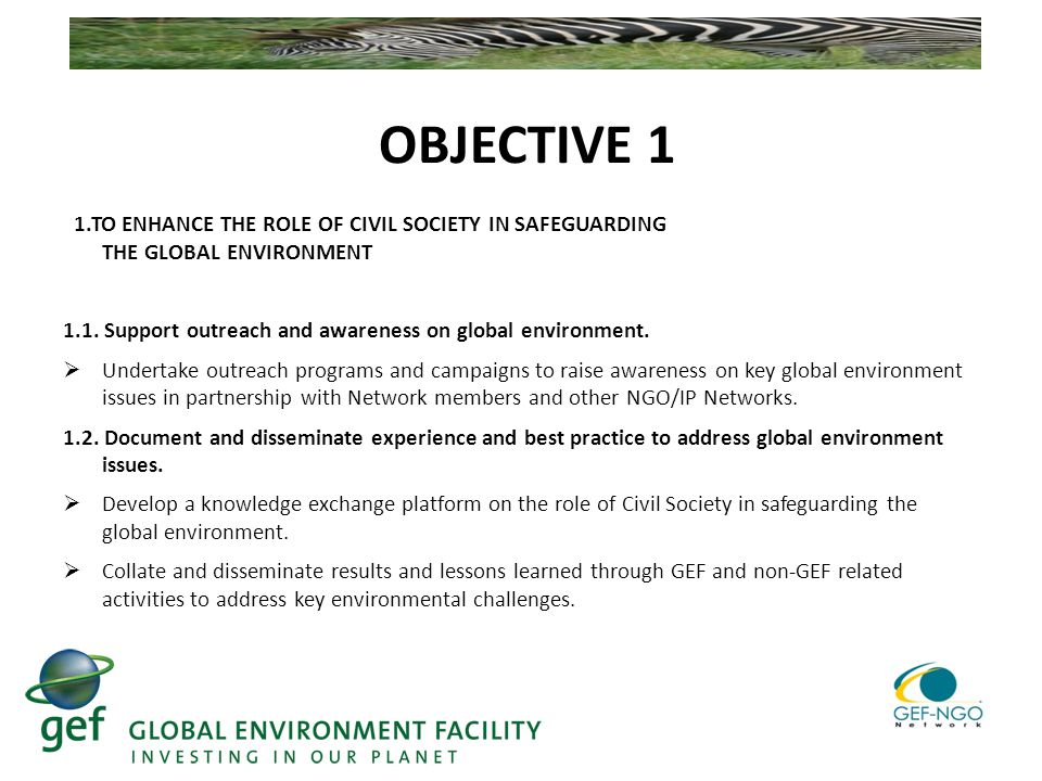 OBJECTIVE 1 1.TO ENHANCE THE ROLE OF CIVIL SOCIETY IN SAFEGUARDING THE GLOBAL ENVIRONMENT 1.1.
