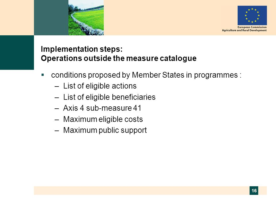 16 Implementation steps: Operations outside the measure catalogue  conditions proposed by Member States in programmes : –List of eligible actions –List of eligible beneficiaries –Axis 4 sub-measure 41 –Maximum eligible costs –Maximum public support