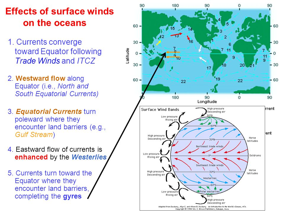 Effects of surface winds on the oceans 1.