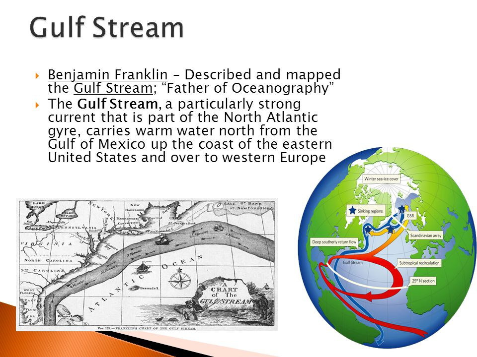  Benjamin Franklin – Described and mapped the Gulf Stream; Father of Oceanography  The Gulf Stream, a particularly strong current that is part of the North Atlantic gyre, carries warm water north from the Gulf of Mexico up the coast of the eastern United States and over to western Europe