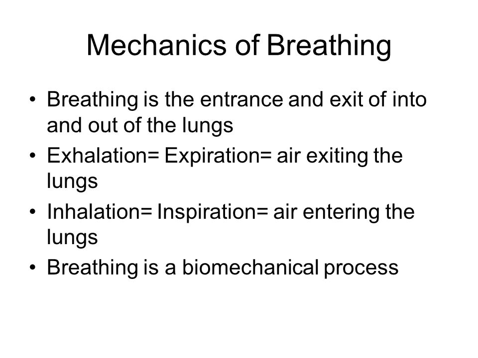 Mechanics of Breathing Breathing is the entrance and exit of into and out of the lungs Exhalation= Expiration= air exiting the lungs Inhalation= Inspiration= air entering the lungs Breathing is a biomechanical process