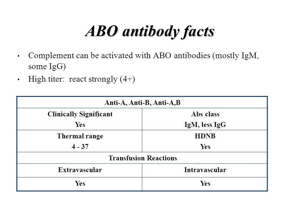 18 ABO antibody facts ...