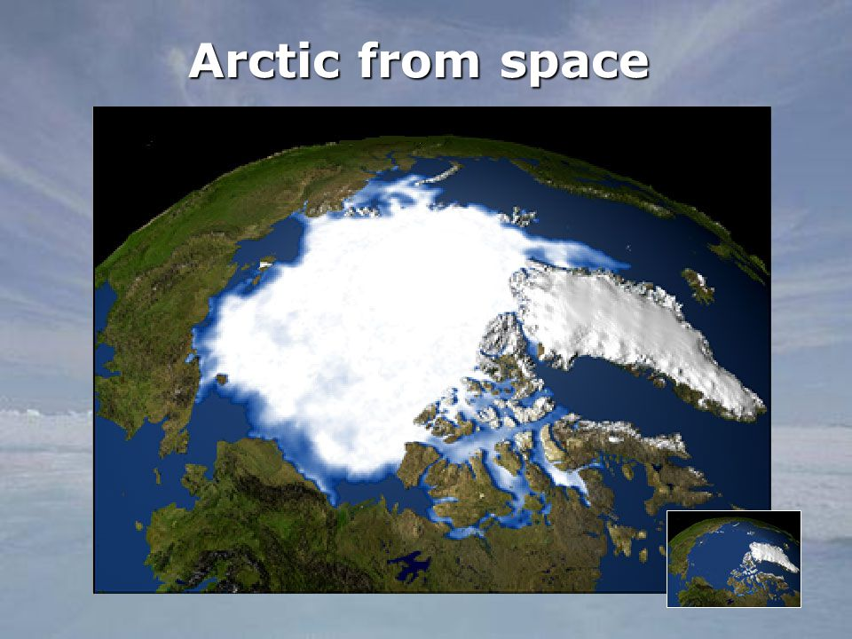 Arctic from space
