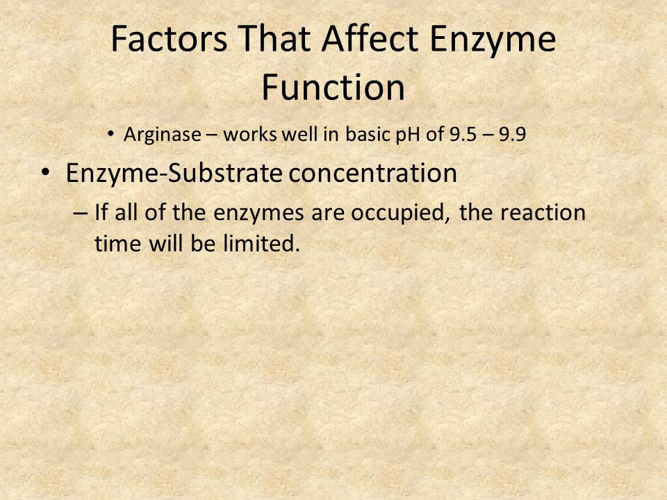 Factors That Affect Enzyme Function Arginase – works well in basic pH of 9.5 – 9.9 Enzyme-Substrate concentration – If all of the enzymes are occupied, the reaction time will be limited.