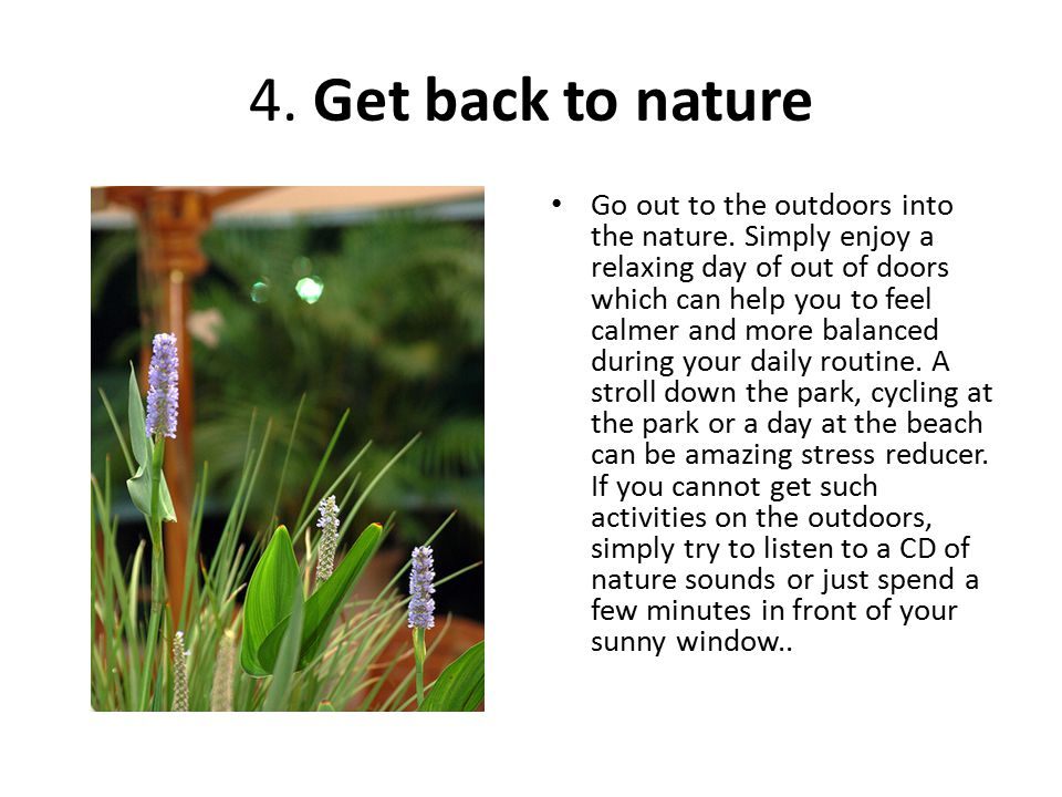 4. Get back to nature Go out to the outdoors into the nature.
