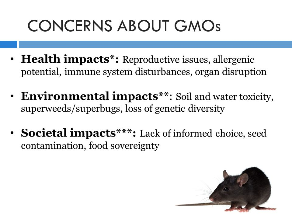 CONCERNS ABOUT GMOs Health impacts*: Reproductive issues, allergenic potential, immune system disturbances, organ disruption Environmental impacts**: Soil and water toxicity, superweeds/superbugs, loss of genetic diversity Societal impacts***: Lack of informed choice, seed contamination, food sovereignty