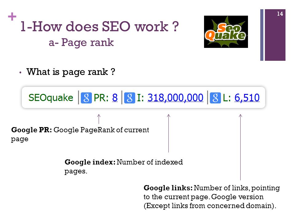 + 1-How does SEO work . a- Page rank What is page rank .