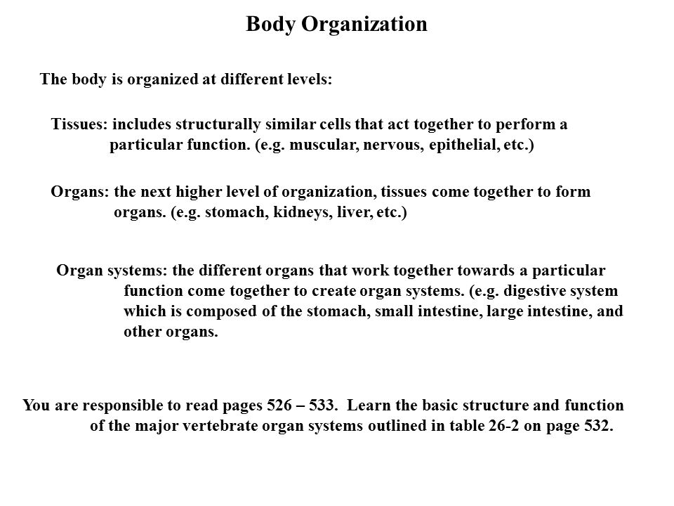 "Homeostasis and Body Organization What is homeostasis? ""constancy ..."