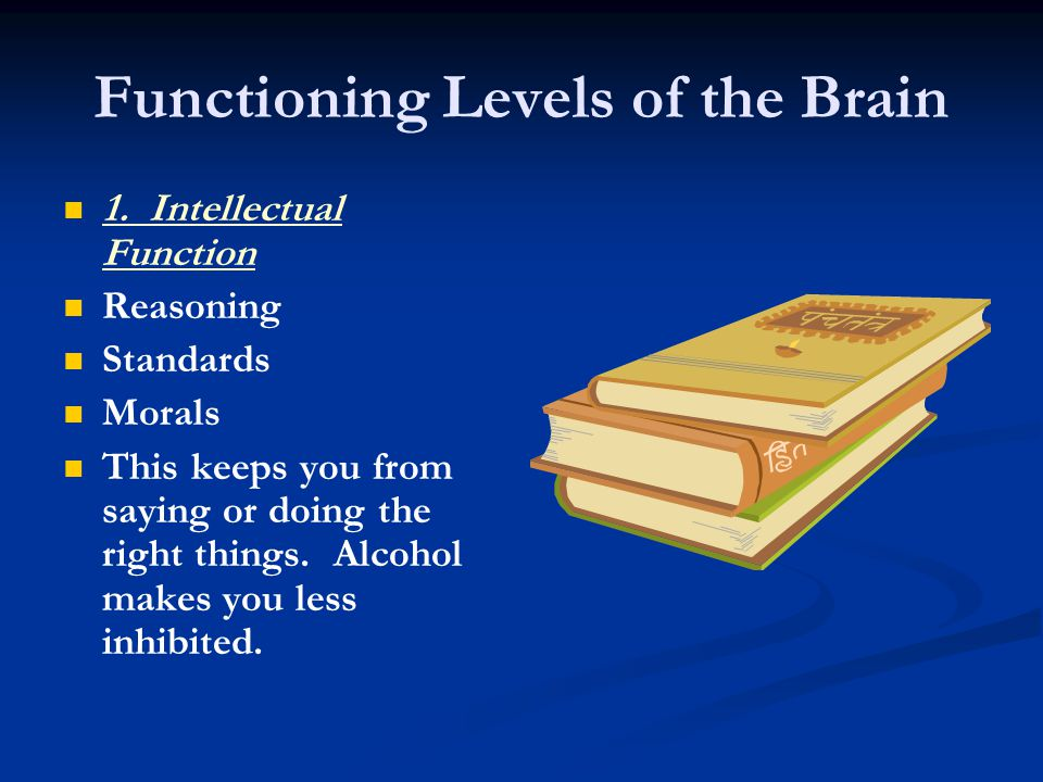 Functioning Levels of the Brain 1.