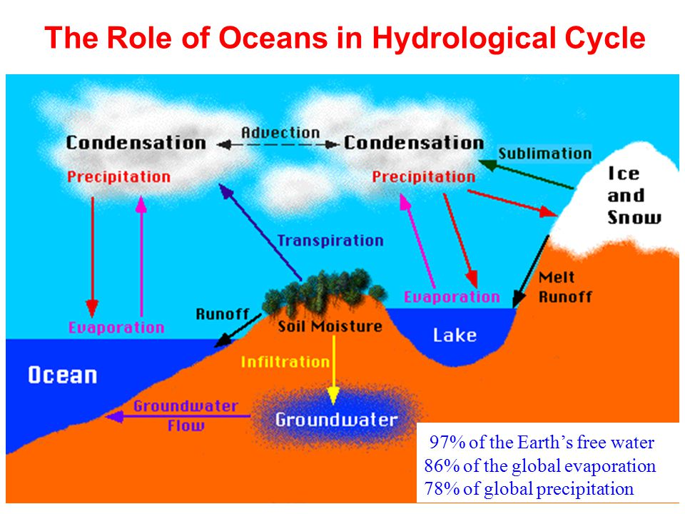The Role of Oceans in Hydrological Cycle 97% of the Earth's free water 86% of the global evaporation 78% of global precipitation