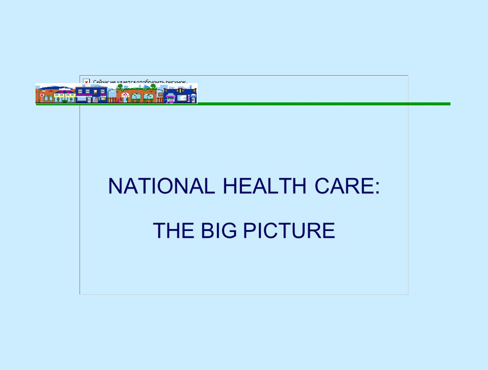 NATIONAL HEALTH CARE: THE BIG PICTURE