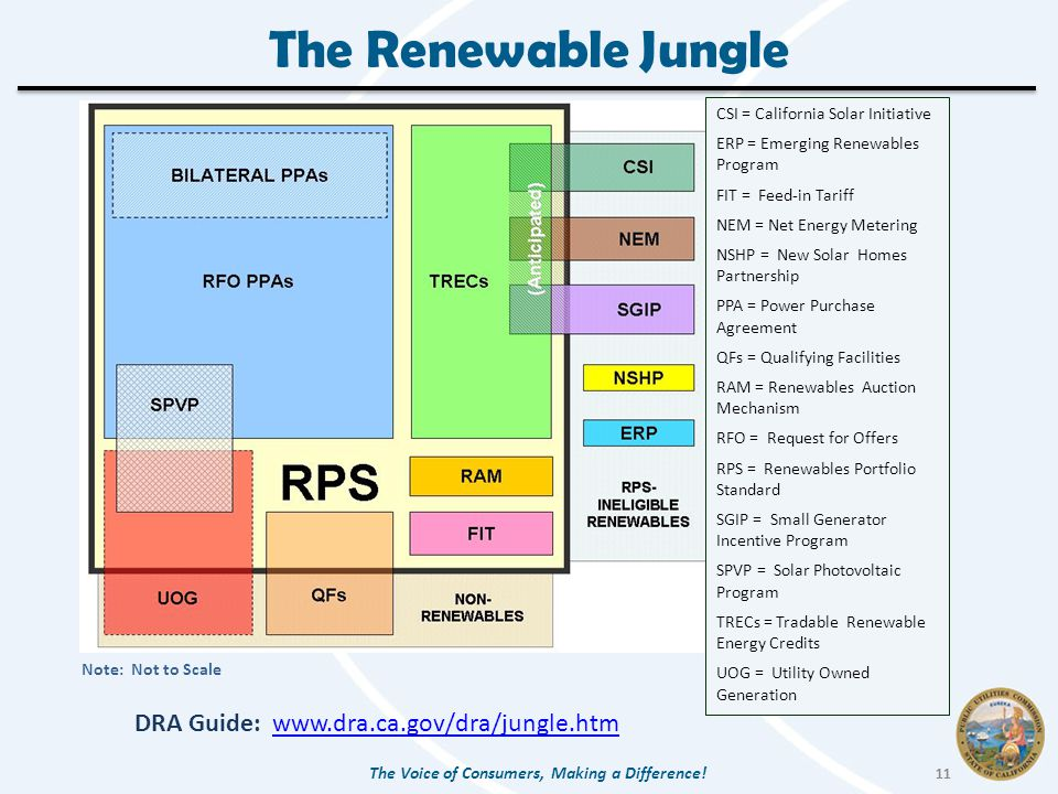 The Renewable Jungle The Voice of Consumers, Making a Difference.