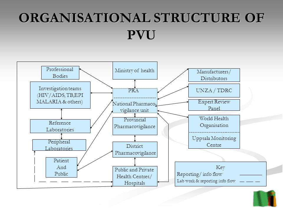 ORGANISATIONAL STRUCTURE OF PVU Ministry of health PRA National Pharmaco- vigilance unit Provincial Pharmacovigilance District Pharmacovigilance Public and Private Health Centres/ Hospitals Professional Bodies Investigation teams (HIV/AIDS, TB,EPI MALARIA & others) Reference Laboratories Peripheral Laboratories Patient And Public Manufacturers/ Distributors UNZA / TDRC Expert Review Panel World Health Organisation Uppsala Monitoring Centre Key Reporting/ info flow Lab work & reporting info flow