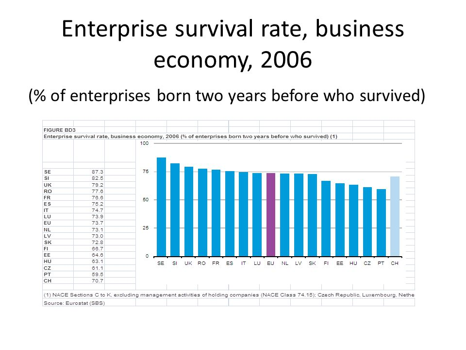 Enterprise survival rate, business economy, 2006 (% of enterprises born two years before who survived)