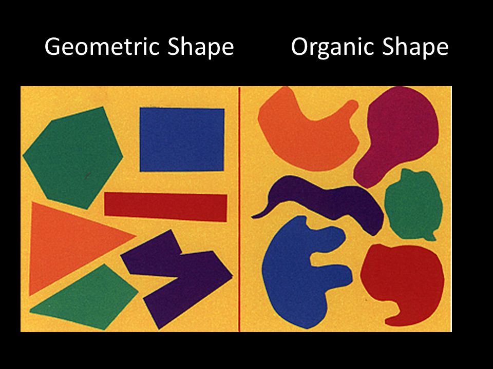 Geometric ShapeOrganic Shape