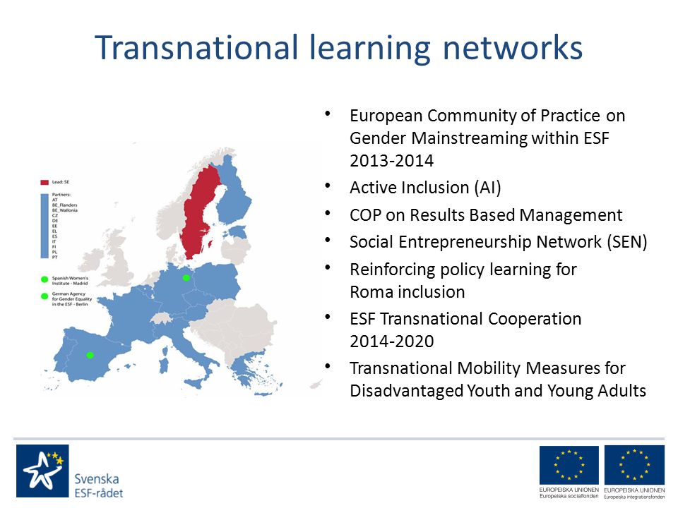 Transnational learning networks European Community of Practice on Gender Mainstreaming within ESF Active Inclusion (AI) COP on Results Based Management Social Entrepreneurship Network (SEN) Reinforcing policy learning for Roma inclusion ESF Transnational Cooperation Transnational Mobility Measures for Disadvantaged Youth and Young Adults