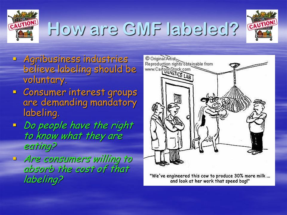 What are the 'cons' of GMF.  Potential human health impact such as production of new allergens.