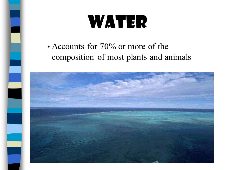 Accounts for 70% or more of the composition of most plants and animals WATER