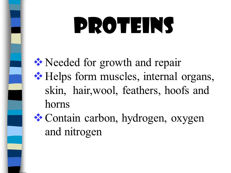 Proteins  Needed for growth and repair  Helps form muscles, internal organs, skin, hair,wool, feathers, hoofs and horns  Contain carbon, hydrogen, oxygen and nitrogen
