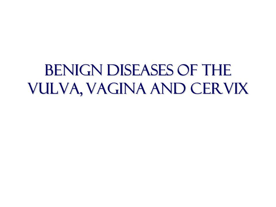 Benign diseases of the vulva, vagina and cervix