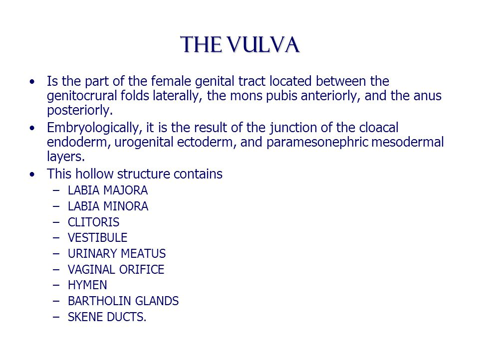The vulva Is the part of the female genital tract located between the genitocrural folds laterally, the mons pubis anteriorly, and the anus posteriorl