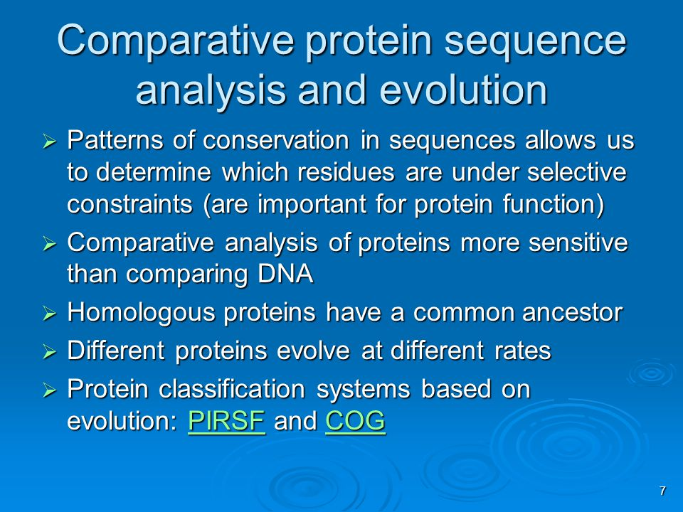 7 Comparative protein sequence analysis and evolution  Patterns of conservation in sequences allows us to determine which residues are under selective constraints (are important for protein function)  Comparative analysis of proteins more sensitive than comparing DNA  Homologous proteins have a common ancestor  Different proteins evolve at different rates  Protein classification systems based on evolution: PIRSF and COG PIRSFCOGPIRSFCOG