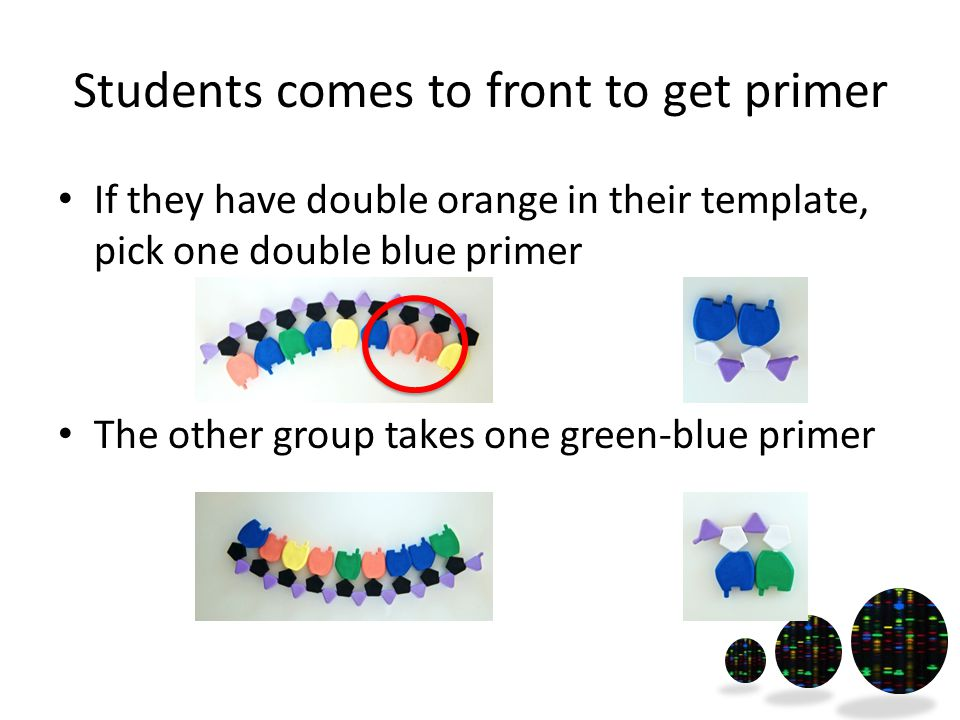 Students comes to front to get primer If they have double orange in their template, pick one double blue primer The other group takes one green-blue primer