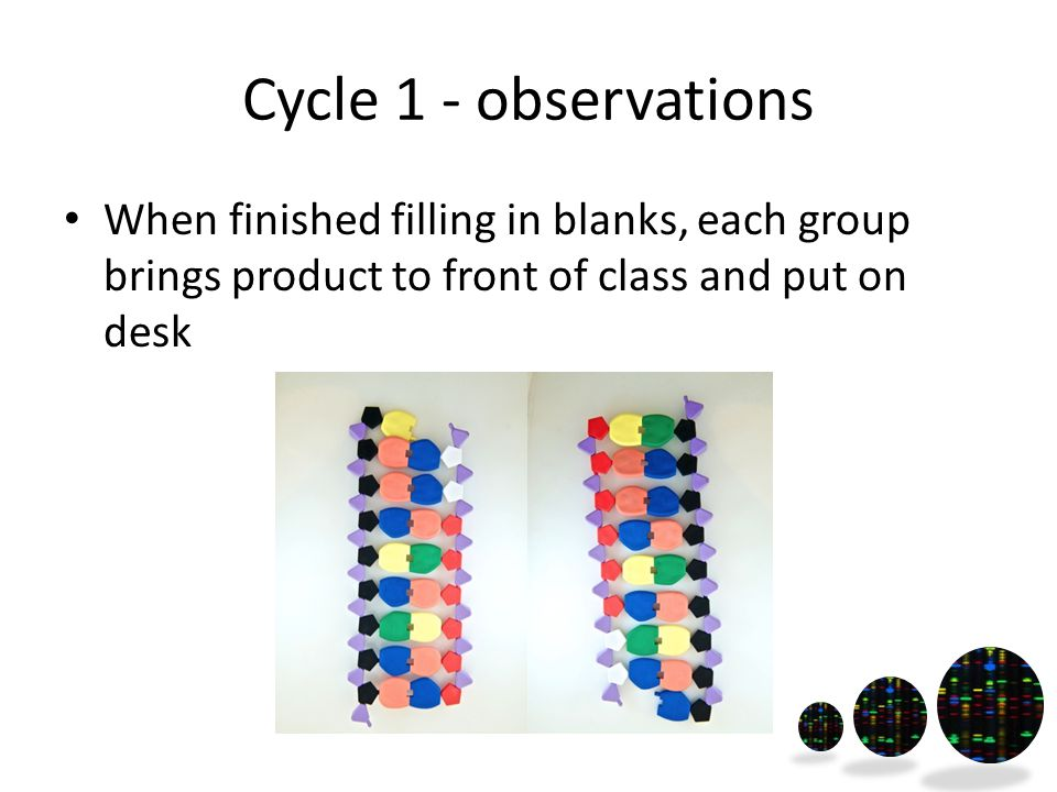 Cycle 1 - observations When finished filling in blanks, each group brings product to front of class and put on desk