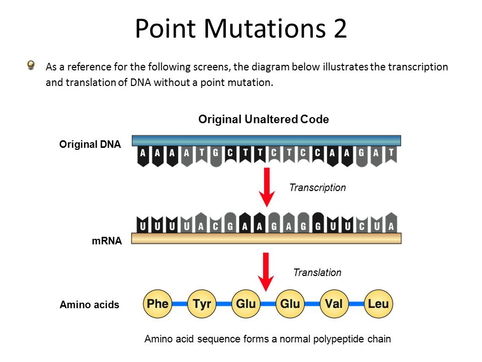 MUTATIONS. Fitness of Mutations The fitness of a mutation ...