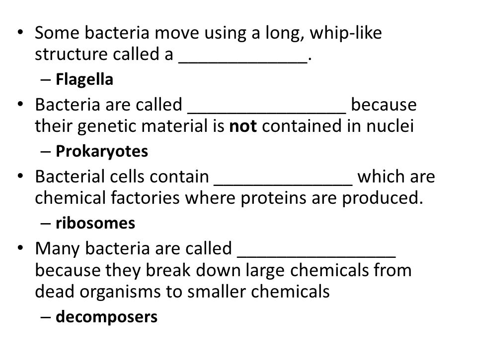 Some bacteria move using a long, whip-like structure called a _____________.