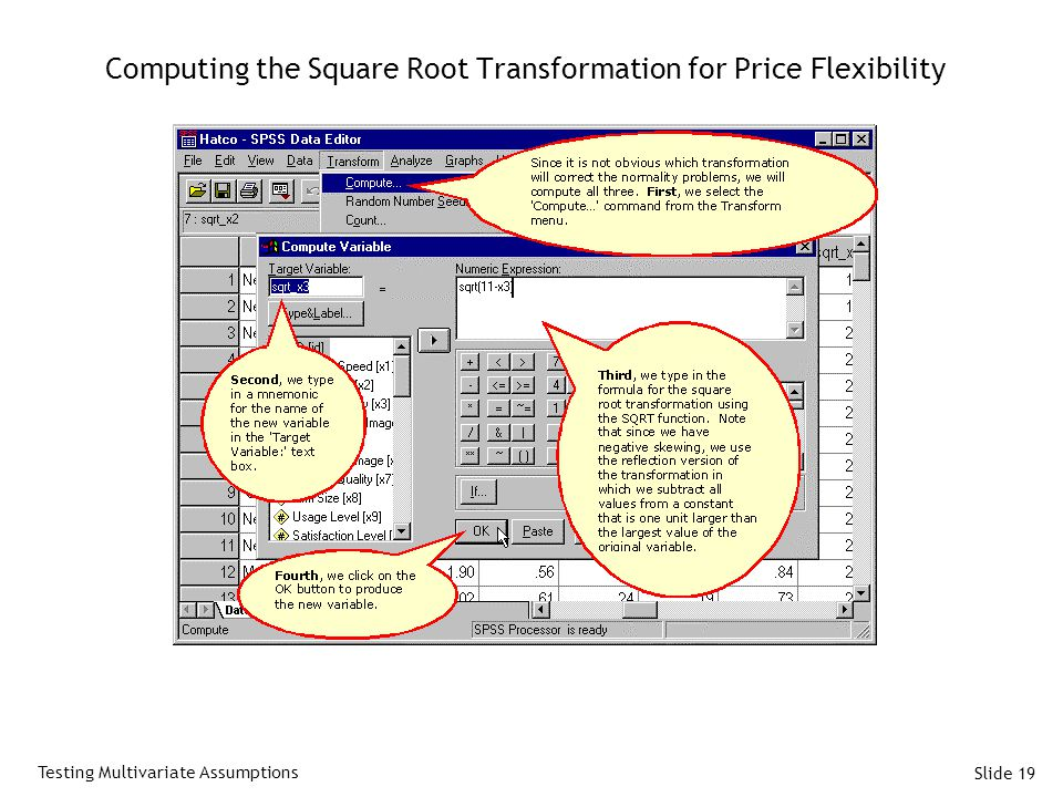 Slide 19 Computing the Square Root Transformation for Price Flexibility Testing Multivariate Assumptions